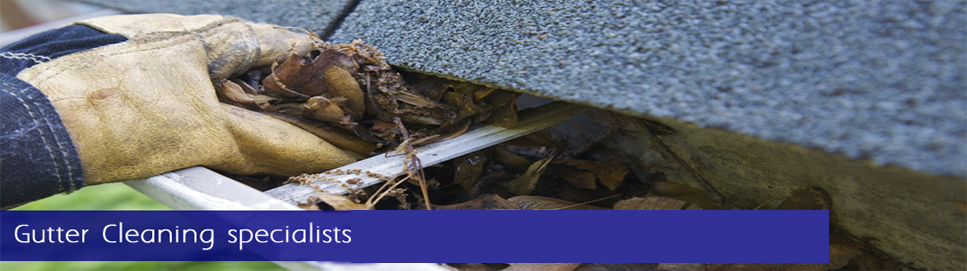 Gateshead's Most Reliable Gutter Cleaning Service